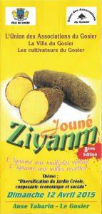 Jouné Ziyanm