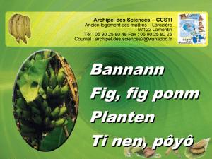 Diaporama Banane