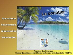 Diaporama Cocotier