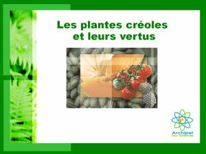 Diaporama Les plantes créoles et leurs vertus