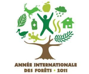 Année Internationale des Forêts