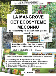 Table ronde mangrove