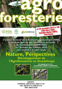 Table ronde agroforesterie
