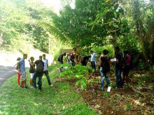 Jardin créole pédagogique