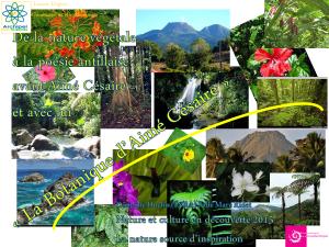 La botanique d'Aimé Césaire