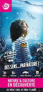 Programme Nature et culture en découverte 2017