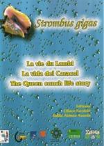 Brochure lambi