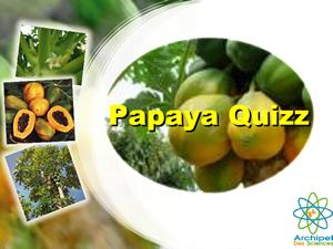 Quizz Papaye